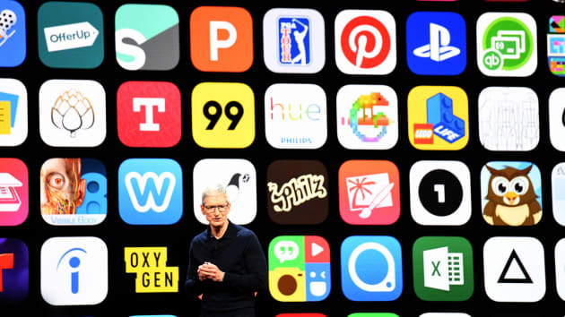 Tim Cook - chief executive officer of Apple Inc